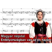 Zenélő doboz Erdélyországban van az én hazám