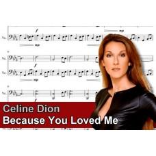 Zenélő doboz Celine Dion Because You Loved Me